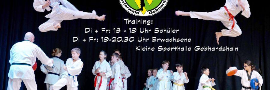 Taekwondo mit spektakulärer Vorführung
